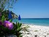 Lemonakia Beach - Foto van Samos Strand mei 2013